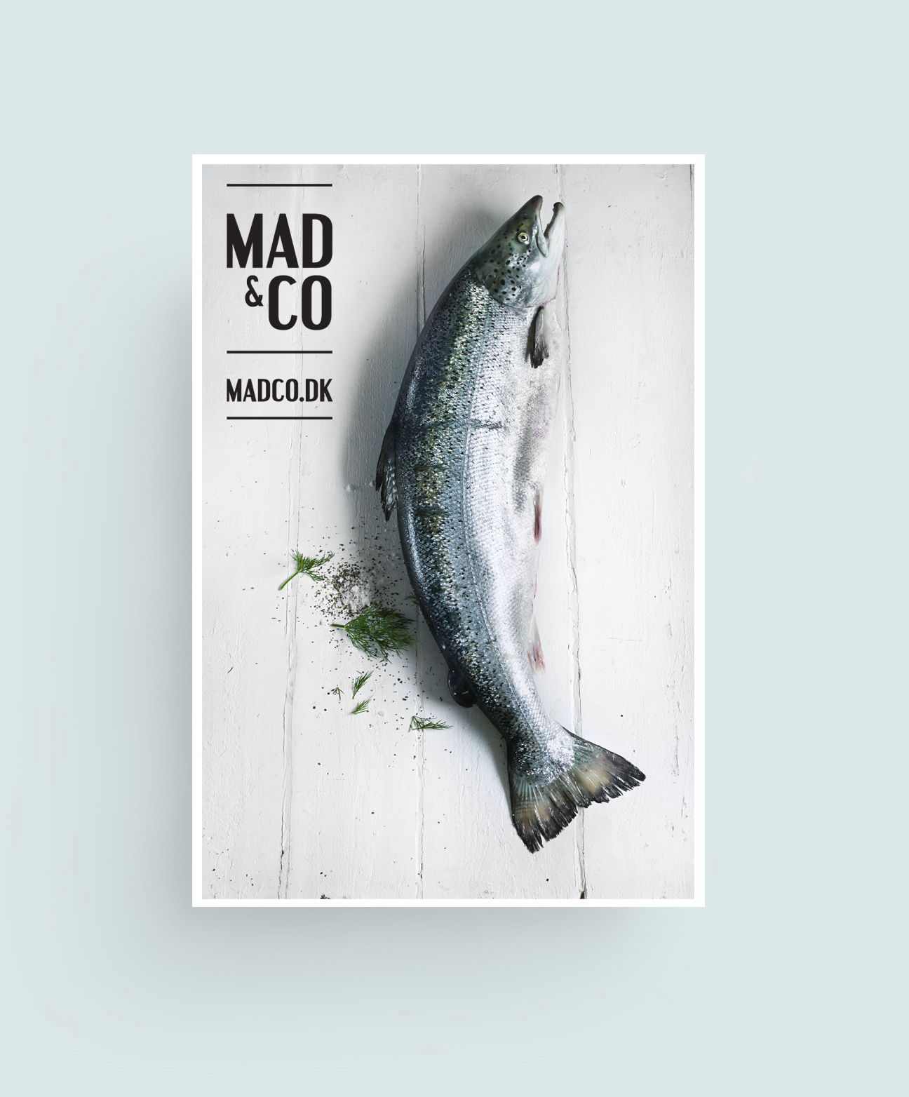 MAD & CO